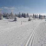 Les pistes de ski nordique