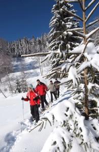des skieurs dans le massif vosgien